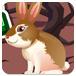 可爱小兔逃脱2