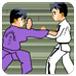 朝鲜王牌跆拳道